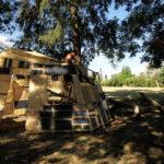 3 la casa del arbol proceso (2)